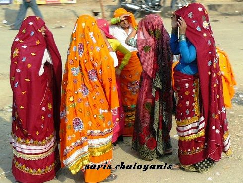 29 saris chatoyants