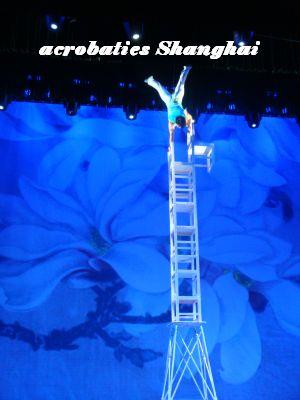 acrobaties Shanghai
