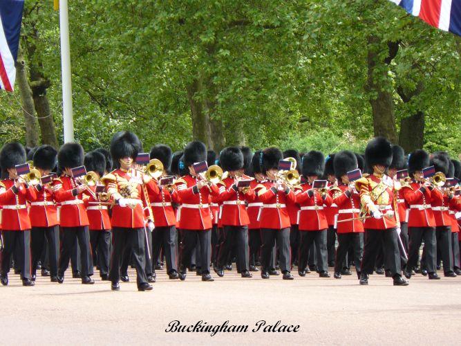 Buckingham   (65)
