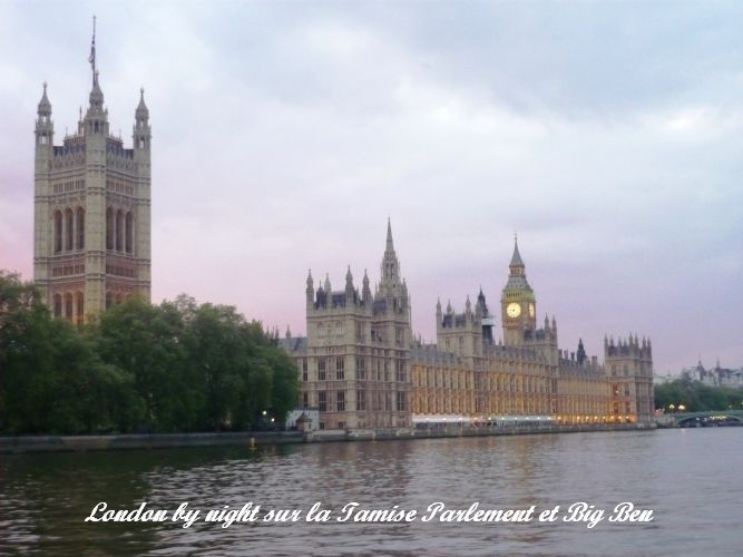 Repas Tamise Parlement