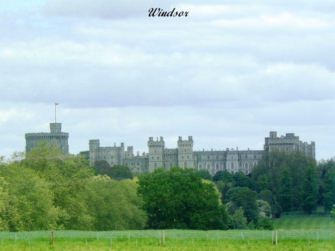Windsor (10)