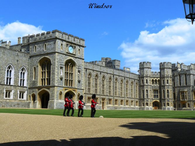Windsor (44)