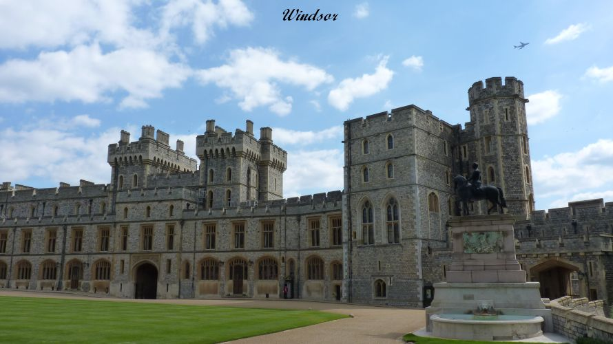 Windsor (66)