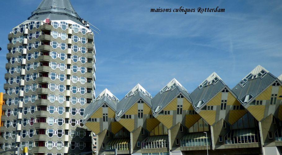 095 Rotterdam maisons cubique