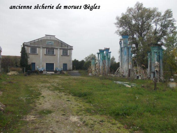 morue1