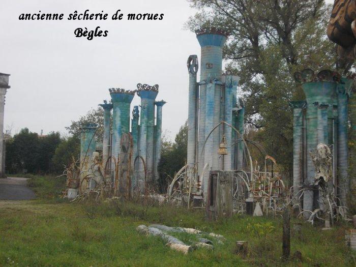 morue2