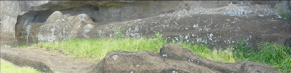 17-moai te tokanga