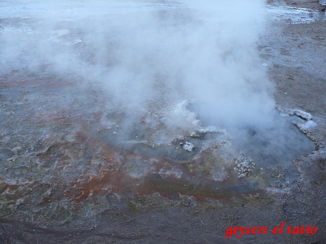 geysers el tatio0008