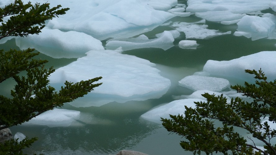 glacier balmaceda serrano0048