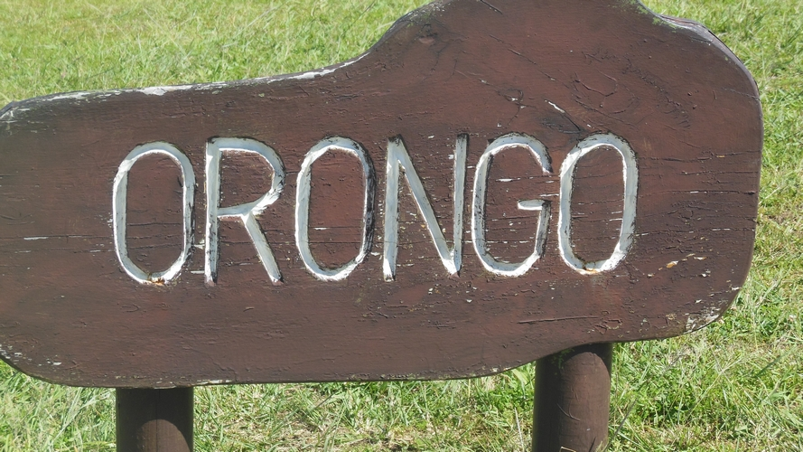 orongo(01)