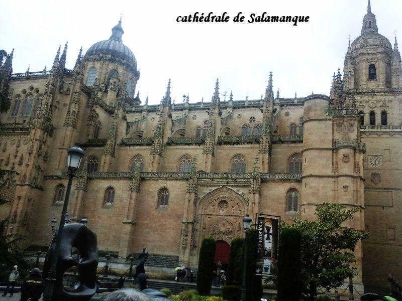 69 cathédrale Salamanque
