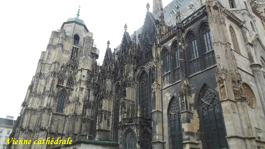 vienne-cathedrale