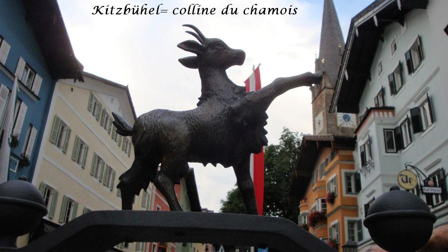 41-chamois-symbole-de-kitzbuhel
