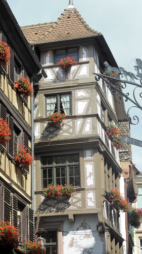 strasbourg-fleurs