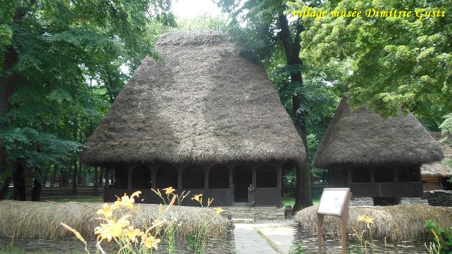 village-dimitrigusti14