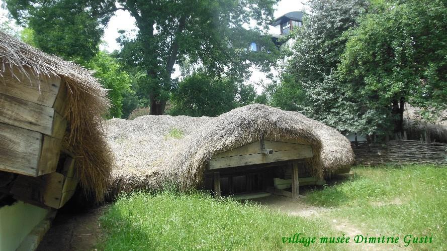 village-dimitrigusti24