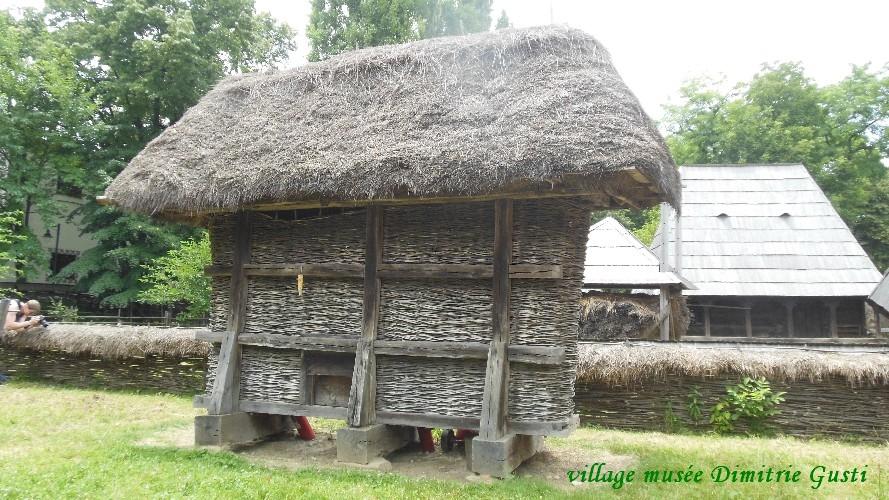 village-dimitrigusti41