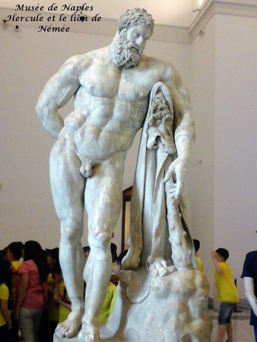 09 Hercule