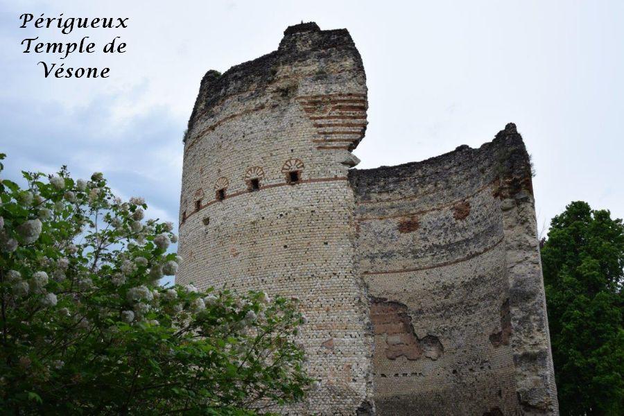 19 temple de Vésone