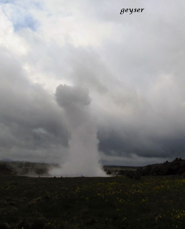 05 geyser 2