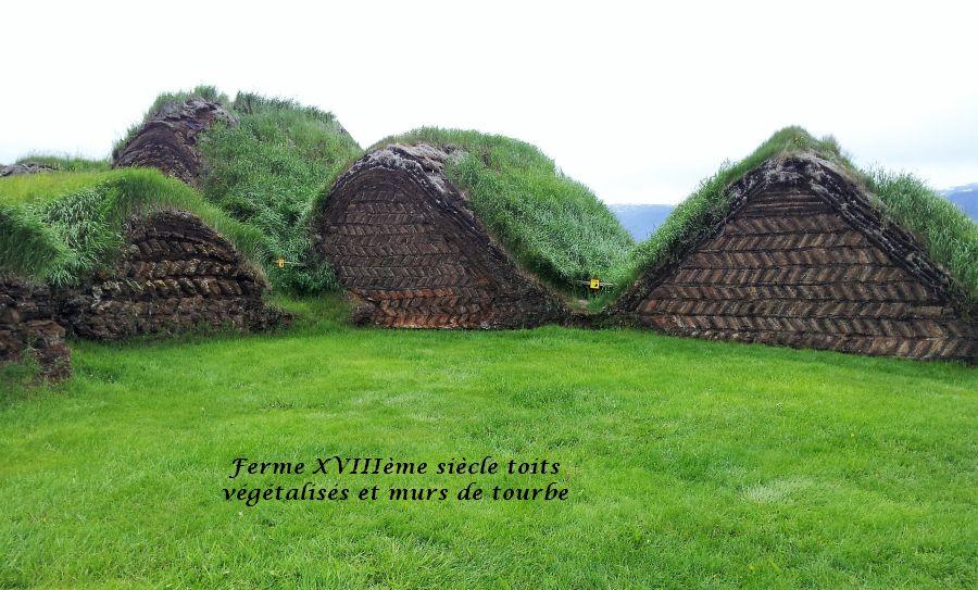 16 murs en tourbe